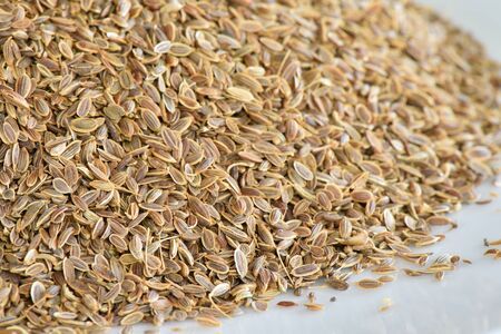 dill: Dill seed
