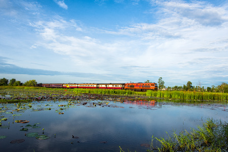 dea: Wetlands in Nature Reserve with train , Fertile swamp and various biology in nature,  Located Nong Dea Swamp at Udonthani Province, Thailand Stock Photo