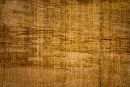 hardwood: Brown hardwood texture