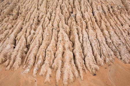 soil erosion: Pattern of Soil erosion textured Stock Photo