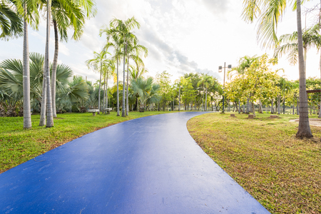 jogging track: Landscape with blue jogging track at green park and no people Stock Photo