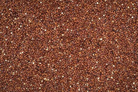 red quinoa: Red quinoa seed background Stock Photo