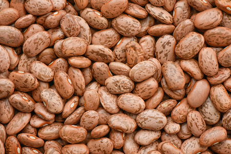 borlotti beans: Pinto beans background
