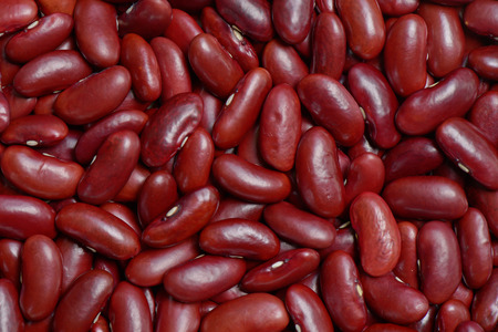 adzuki bean: Red bean or Adzuki bean background