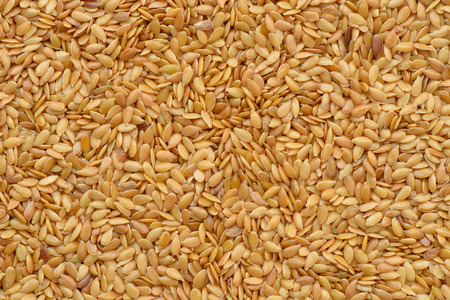 linseed: Grain  linseed background