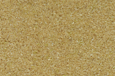coarse: Japan Coarse rice background, Japan brown rice for healthy