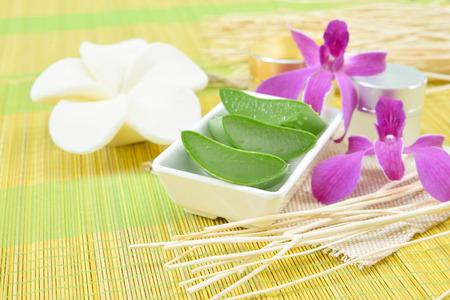 aloe vera flowers: Prepared aloe vera use in spa for skincare and cosmetic Stock Photo