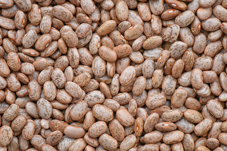 pinto bean: Prepared pinto bean for cooking and background
