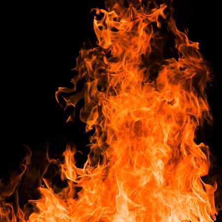 blazing: Blazing fire flame background Stock Photo