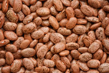 pinto bean: Pinto bean background and textured Stock Photo