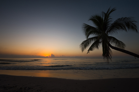 Beautiful sunset over tripical beach with coconut tree palm Stock Photo