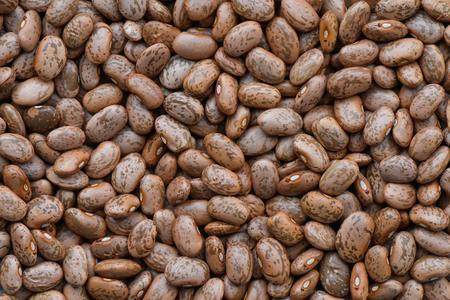 pinto bean: Pinto bean background