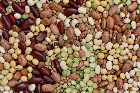 green bean: Multicolor dired legumes for background, Different dry bean for eating healthy