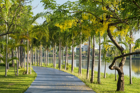 Green garden with jogging track at the park