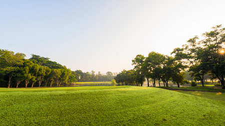 Scenery green golf and meadow with sunbeam in morning, Wonderful sunbeam at the natural park Banque d'images - 106164999