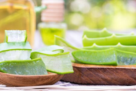 Fresh aloe vera leaf slice for skin care and very useful natural herbel medicine Standard-Bild - 132004974