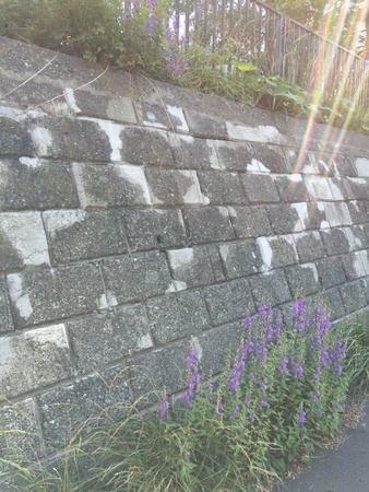 fence: Stone wall Stock Photo
