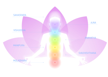Meditation on the lotus flower . Flat vector concept illustration and infographic of human silhouette with chakras: sahasrara, ajna, vishuddha, anahatha, manipura, svadhishthana, muladhara. Иллюстрация