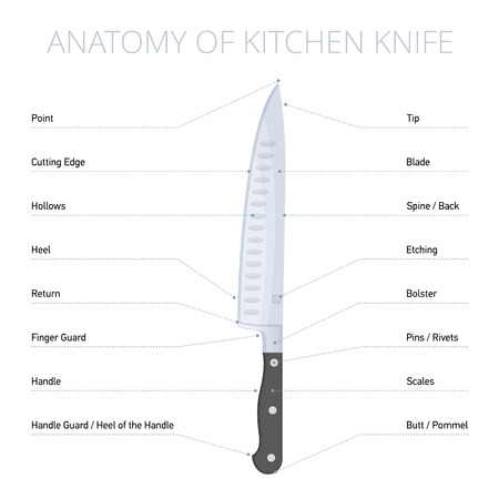 Kitchen knife parts diagram: blade, bolster, handle, spine, edge, butt, heel. Flat illustration of cooking steel tool with callouts. Vector design infographic elements isolated on white background. Foto de archivo - 121831076