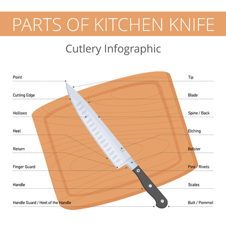 Kitchen knife parts infographic with callouts: blade, bolster, handle, spine, edge, butt, heel. Flat illustration of cutlery on the wooden cutting board. Vector diagram isolated on white background. Foto de archivo - 121831078