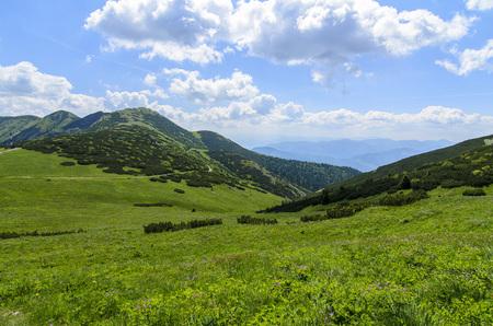 mala fatra: Mala Fatra mountain, Slovakia, Europe - View with green field in National park Mala Fatra Stock Photo