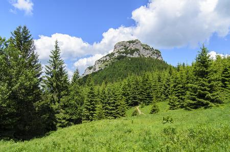 Mala Fatra mountain, Slovakia, Europe - Maly Rozsutec in National park Mala Fatra Stock Photo
