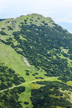 Mala Fatra mountain, Slovakia, Europe - Mountain path in National park Mala Fatra Stock Photo