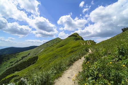 Mala Fatra mountain, Slovakia, Europe - Mountain ridge in National park Mala Fatra Stock Photo