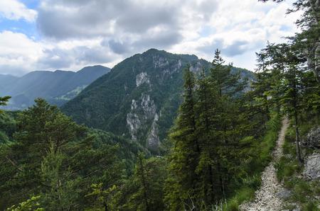 mala fatra: Mala Fatra mountain, Slovakia, Europe -View on hill in National Park Mala Fatra