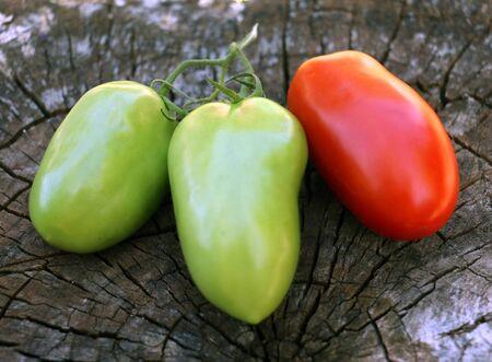 Roma: Ripe and unripe roma tomatoes.