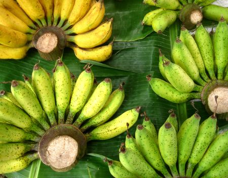 leave: Banana leaves