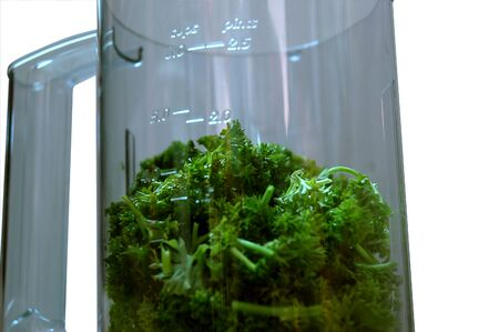 A bunch of parsley herbs in a blender jug