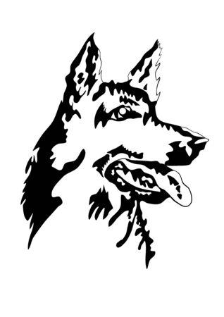Vector illustration of german shepherd dog head Illustration