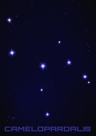 camelopard: Vector illustration of Camelopardalis star constellation in blue