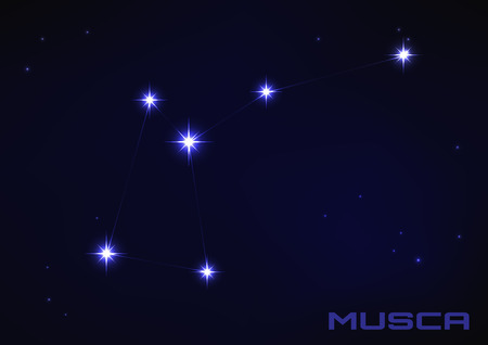 musca: Vector illustration of Musca constellation in blue