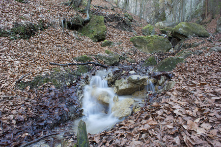 rivulet: early spring forest rivulet with rocks, dry leaves and fallen branches