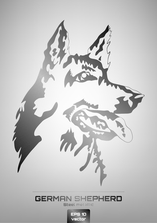 steel head: Vector illustration of steel metallic german shepherd dog head