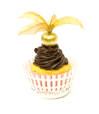 Corn flour Cupcake with chocolate and physalis top and wrapper photo