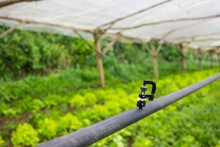 Simple Greenhouse Watering System injector detail