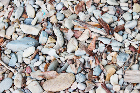 Rocks Imagens