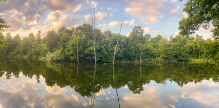 Panorama of sunset on the lake with submerged trees Standard-Bild