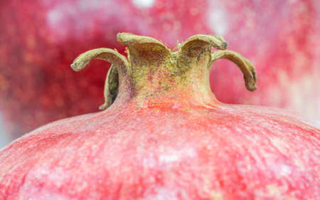Macro close up pomegranate in the store