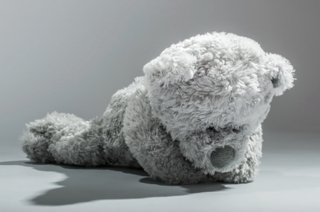 Teddy bear waiting for a friend on a gray background. Stock Photo