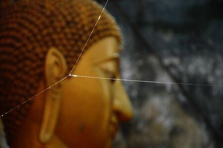 spider net: spider net in front of Buddha