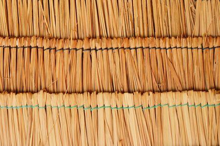 feuille de bambou: toit fabriqu� � partir de feuilles de bambou sec