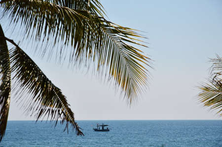 fishery: fishery boat on the sea behind coconut leaf
