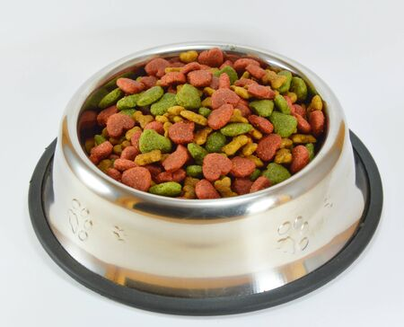 pet food: pet food in stainless bowl