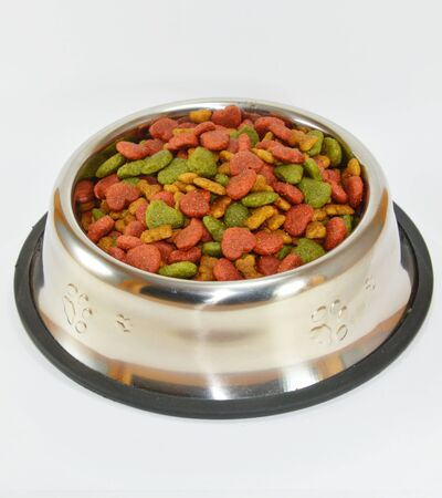 pet food in stainless bowl