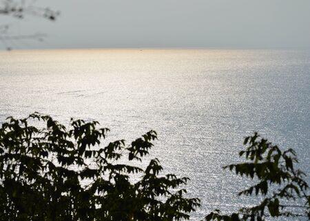 vast: vast sea