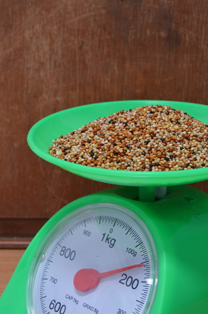 weighting: bird food on weighting scale
